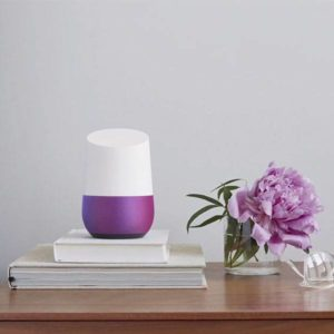 voice controlled speakers